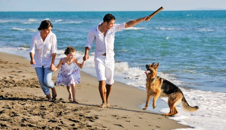 A family play with their dog on Galissas beach, Syros near the Dolphin Bay pet friendly resort hotel